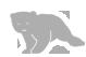 Bear File Converter - Online & Free